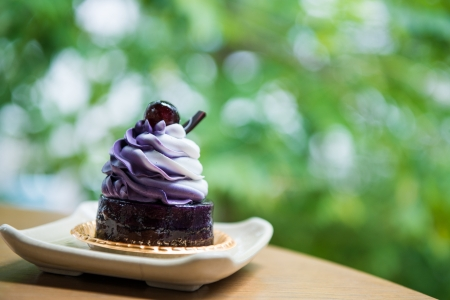 blueberry mousse with chocolate jelly Stock Photo - 21913804