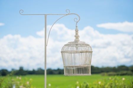 White bird cage as Lamp against blue sky Stock Photo - 23576383