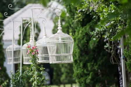 white bird: White bird cage as Lamp in the garden Stock Photo