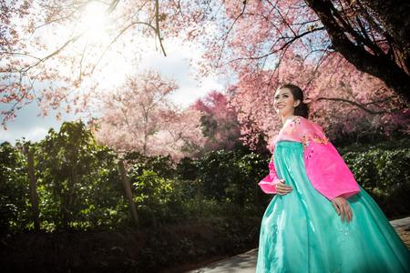 Hanbok: die traditionelle koreanische Kleid und schönen asiatische Mädchen mit Sakura