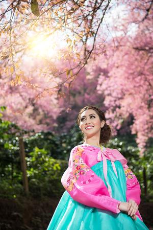 Hanbok  the traditional Korean dress and beautiful Asian girl with sakura Stock Photo