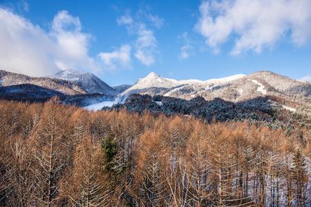 Beautiful landscape of winter season photo