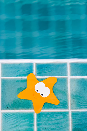 grand strand: Starfish sitting by swimming pool