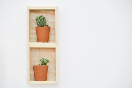 shelf: Wooden shelf Stock Photo