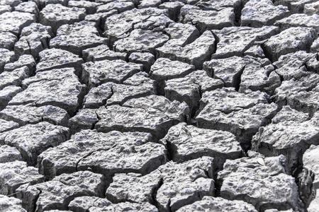 waterless: Dry cracked mud in waterless area