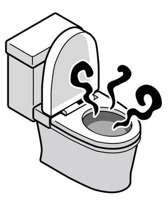 Western toilet with a bad smell