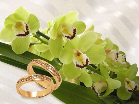 engagement party: gold wedding rings with diamonds and green orchid on white background Stock Photo