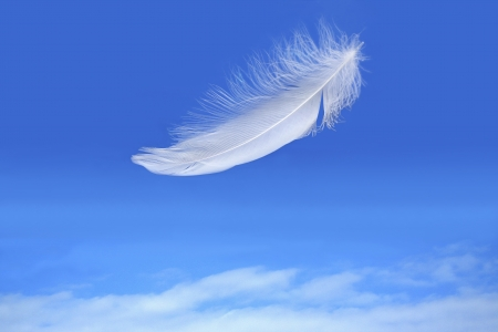 funeral background: white feather falling on blue sky background Stock Photo