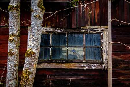 Old window on red house with trees outside