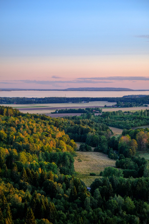beautiful view of a forest in the evening light with a lake in the background