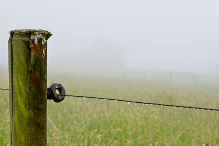 Wooden post with wire from which hang drops of water with a background meadow and dense fog.