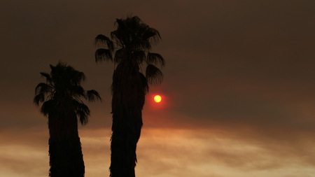 red sun: Red Sun and Brown Sky from a Large Forest Fire Stock Photo