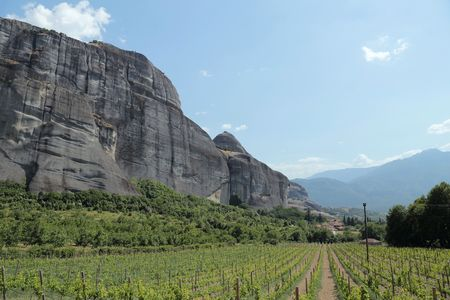 thessaly: Wine Vineyards of Meteora, Thessaly, Greece