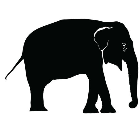 Big elephant black and white silhouette vector illustration