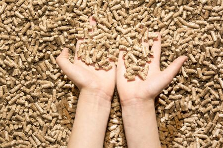 children`s hand with natural ecology wood pellet