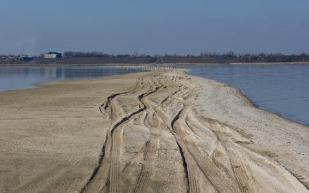 vogelspuren: Autospuren auf einem Sandstrand