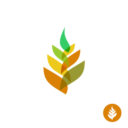 simple logo: Wheat ear transparent style sign.