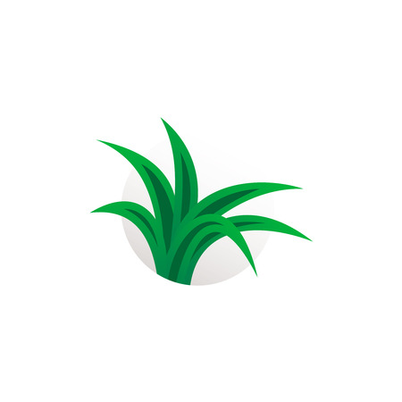 aloe vera plant: Simple aloe vera plant logo. Herbal sign.