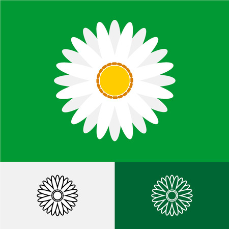 camomiles macro: Camomile top view vector logo. Flat and linear style symbol.