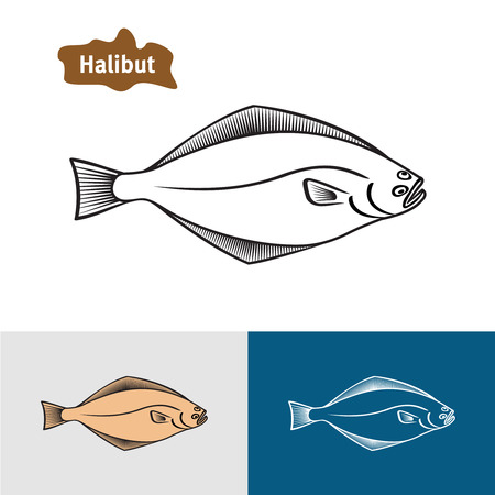 plaice: Halibut fish sumple one color silhouette