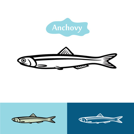 small fishes: Anchovy vector silhouette