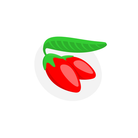 Goji berry vector illustration Illustration