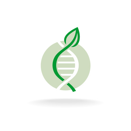 gene: Plant nature genetic engineering symbol. Green leaf with stalk and DNA elements .