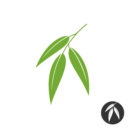Eucalyptus leaves simple vector silhouette. Green and black color versions.