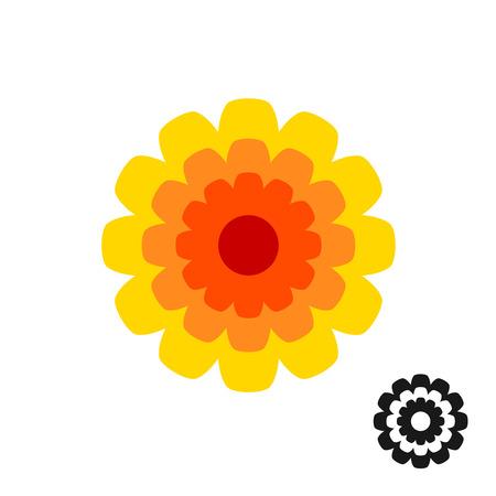 garden marigold: Marigold calendula flower top view . Black version included.