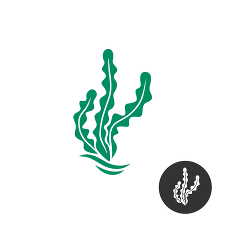 Seaweed vector logo template. One black color monochrome version included.