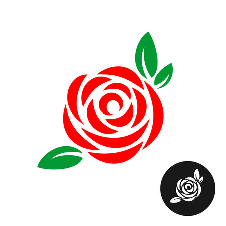beautiful rose: Rose red flower with green leaves.  Rose color symbol. Illustration