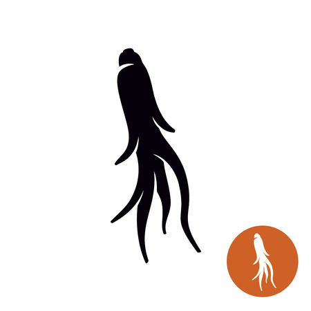 Ginseng root plant simple icon illustration