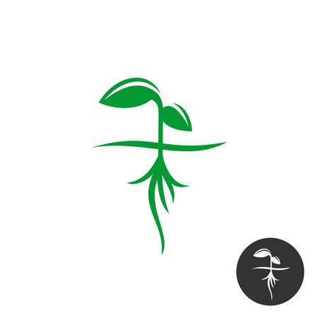 Plant sprout with roots and green leaves silhouette Illustration