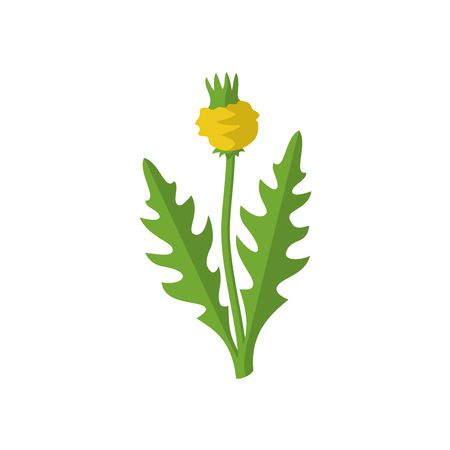 garden plant: Lawn weed malicious sign. Garden weed silhouette with flower. Bad harmful plant