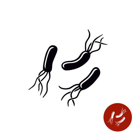 Helicobacter pylori bacteria black simple icon