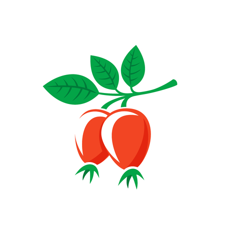 briar: Rosehip leaves with berries color silhouette. Briar symbol.