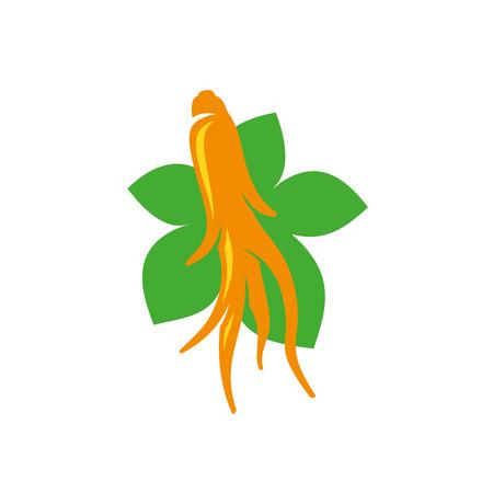 planta con raiz: Ginseng plant root and leaves