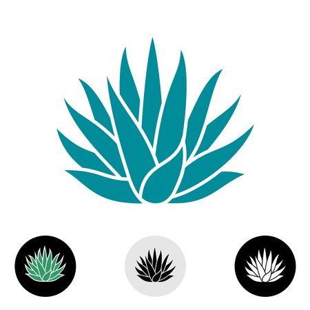 Agave plant vector silhouette. Blue agave cactus illustration. Tequila logo. Vettoriali