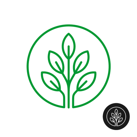 Line style round logo with tree leaves. Three branches up with green leaves on. Circle natural plant sign. Elegant linear nature theme icon. Illustration