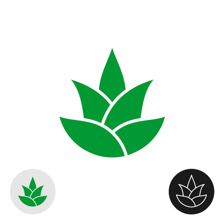 Aloe vera plant isolated icon. Aloe leaves logo. Natural plant silhouette. Pine or hop simple vector sign. Illustration