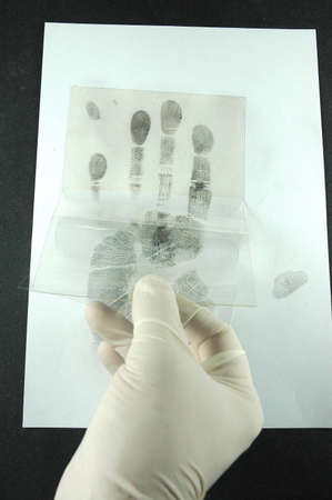 dentification: revealing and preserving fingerprints from paper to foil Stock Photo