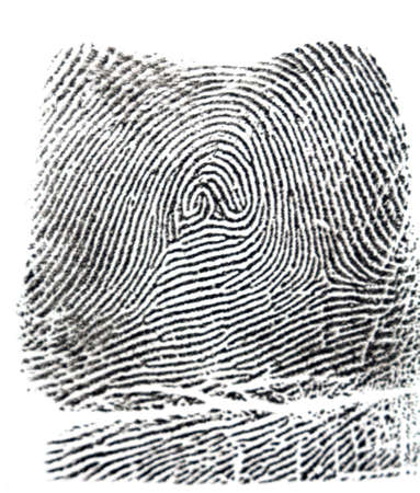 fingermark: one black finger print on white background Stock Photo
