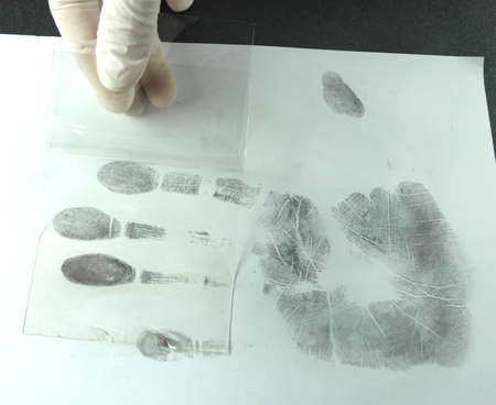 friction ridges: revealing and preserving fingerprints from paper to foil Stock Photo