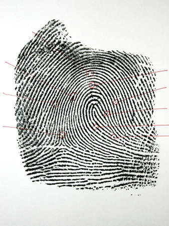 fingermark: one black fingerprint with outline identification points