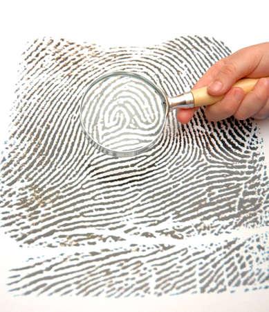 friction ridges: Fingerprint and magnifying glass