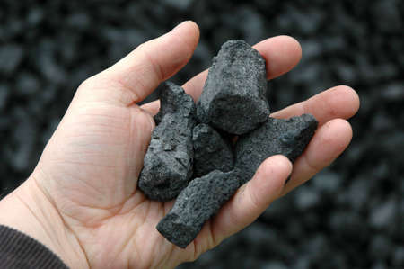 anthracite coal: Coal in hand