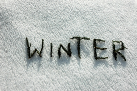i t: W I N T E R  written  with twigs of the spruce on snow