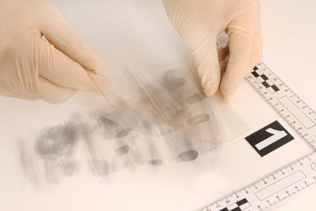 revealing tracks: Revealing and preserving the fingerprints- investigation of the scene