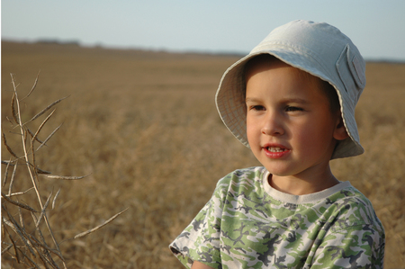 one young child in field of cereal photo