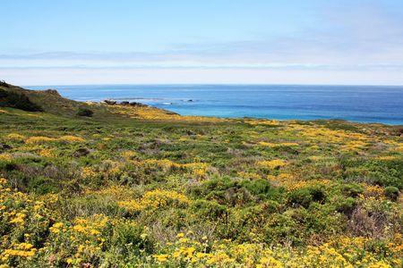 big sur: Big Sur Coastline, California